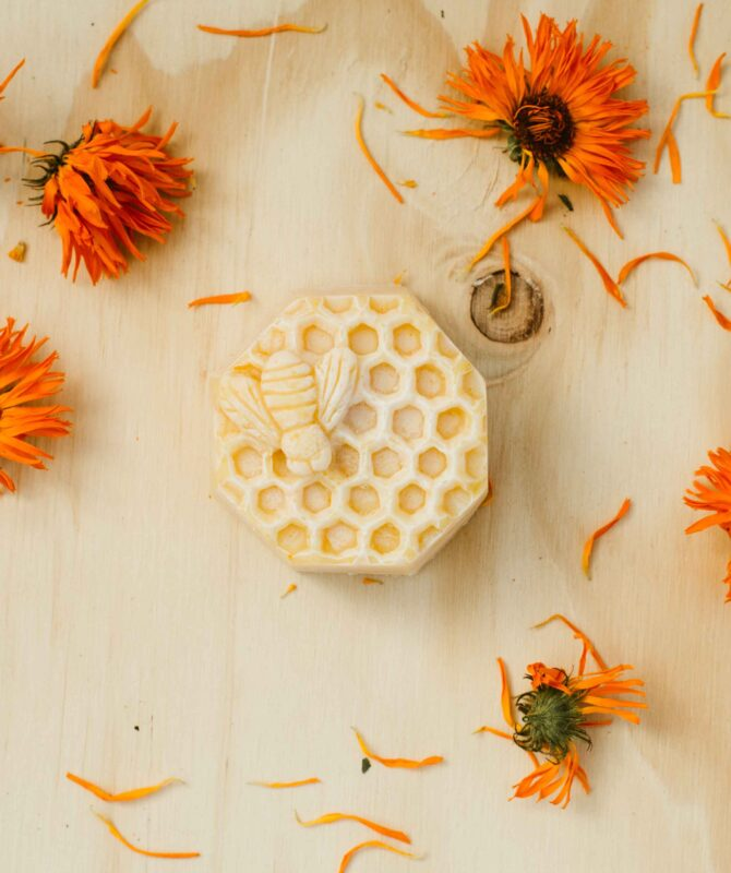BUSY BEES SOAP